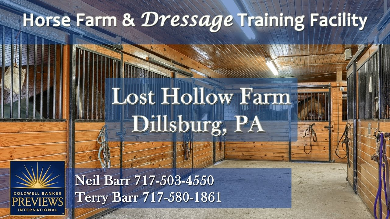 Lost Hollow Farm video preview