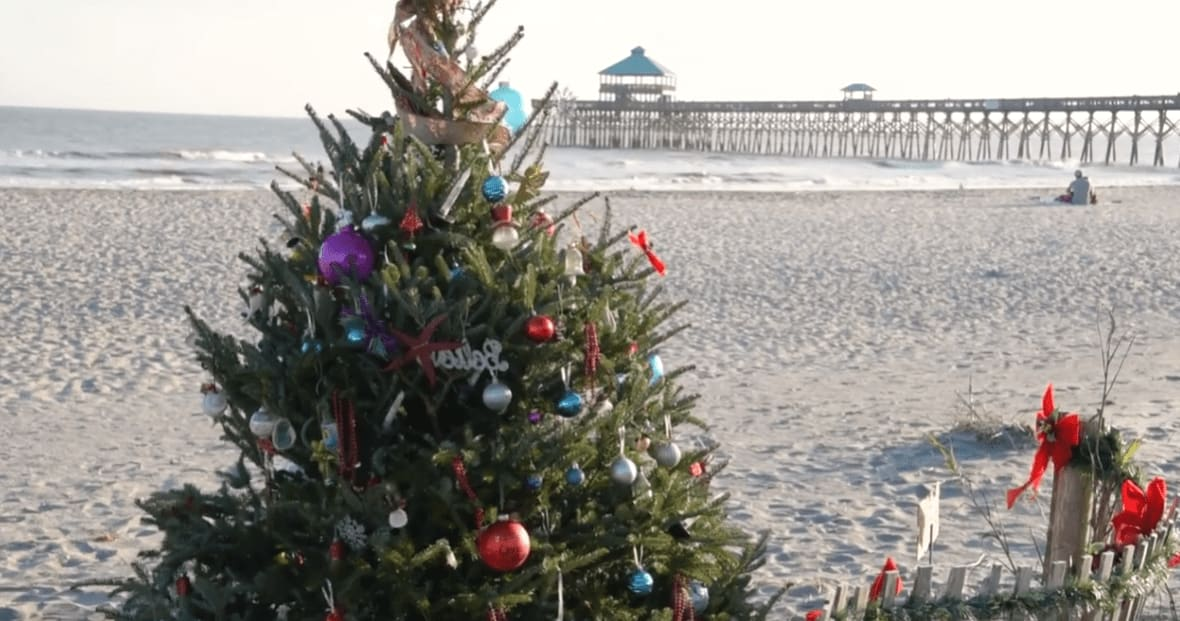Our Favorite Holiday Happenings in Charleston video preview