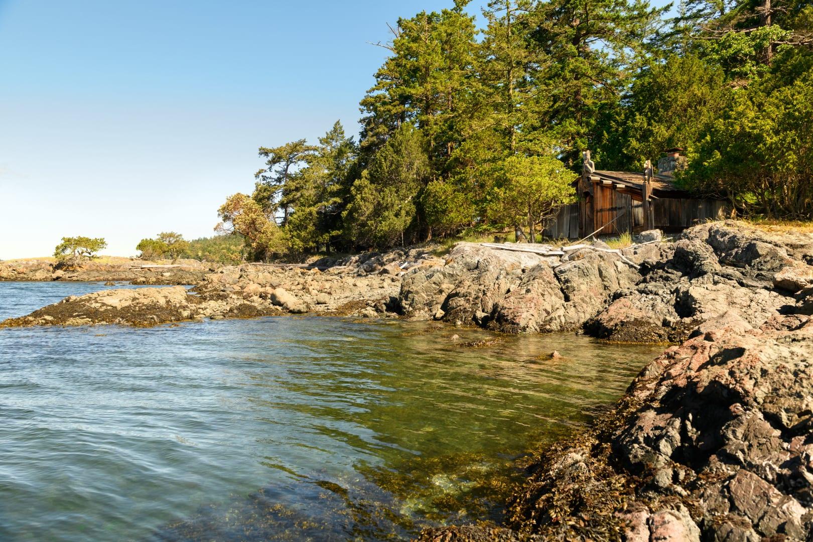 xxx Reef Island