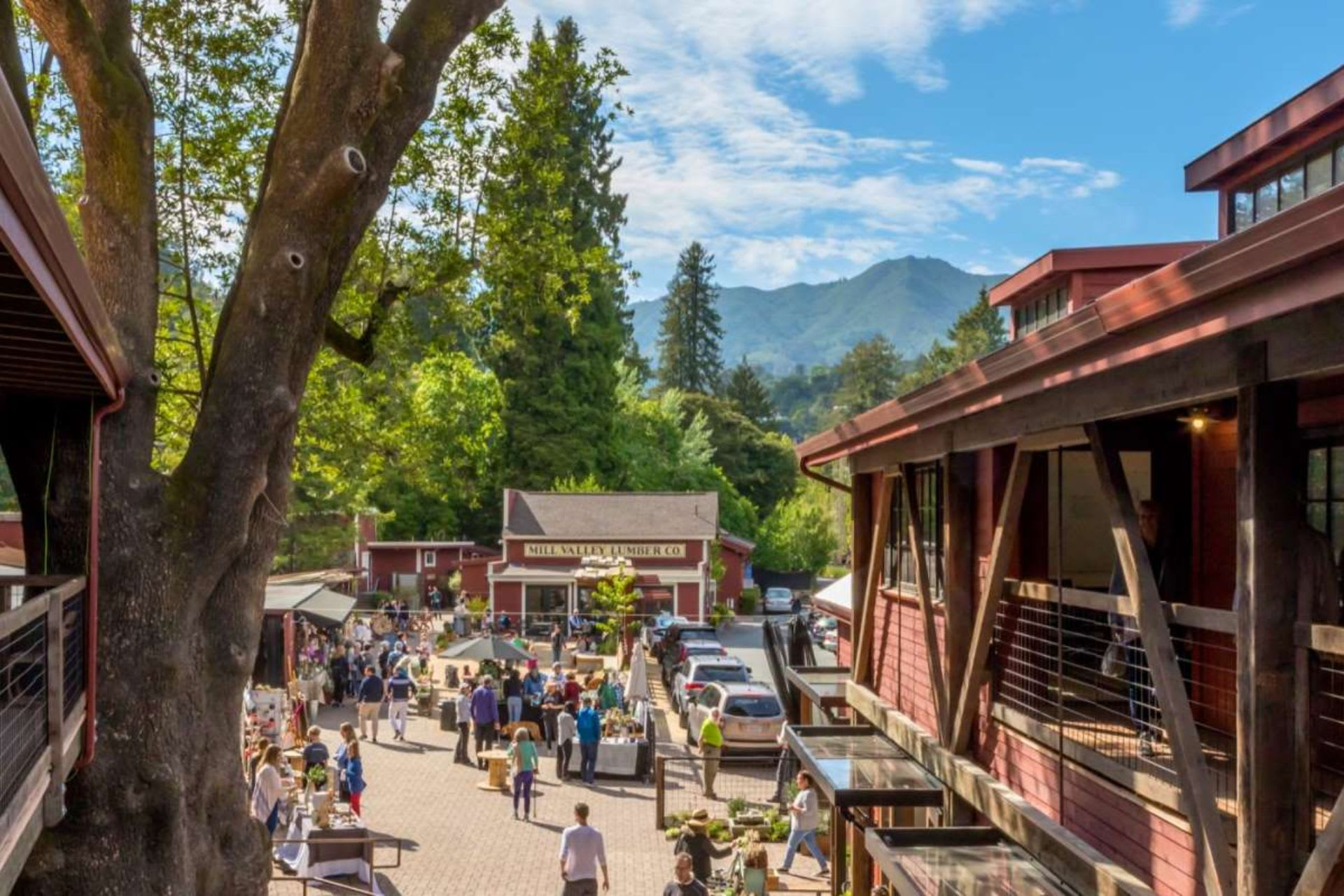 5 Ways to Get Outside in Mill Valley