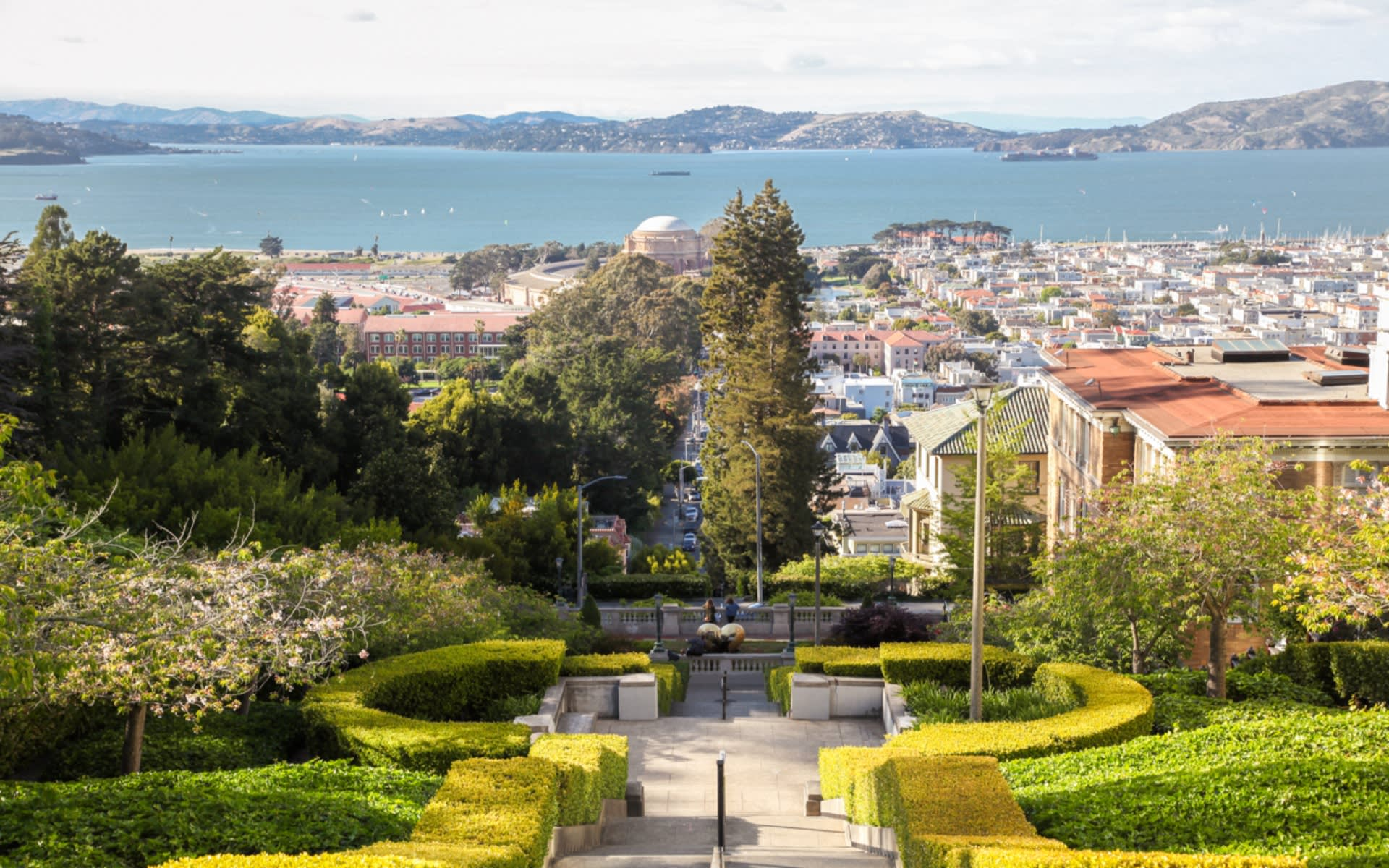 Pacific Heights photo