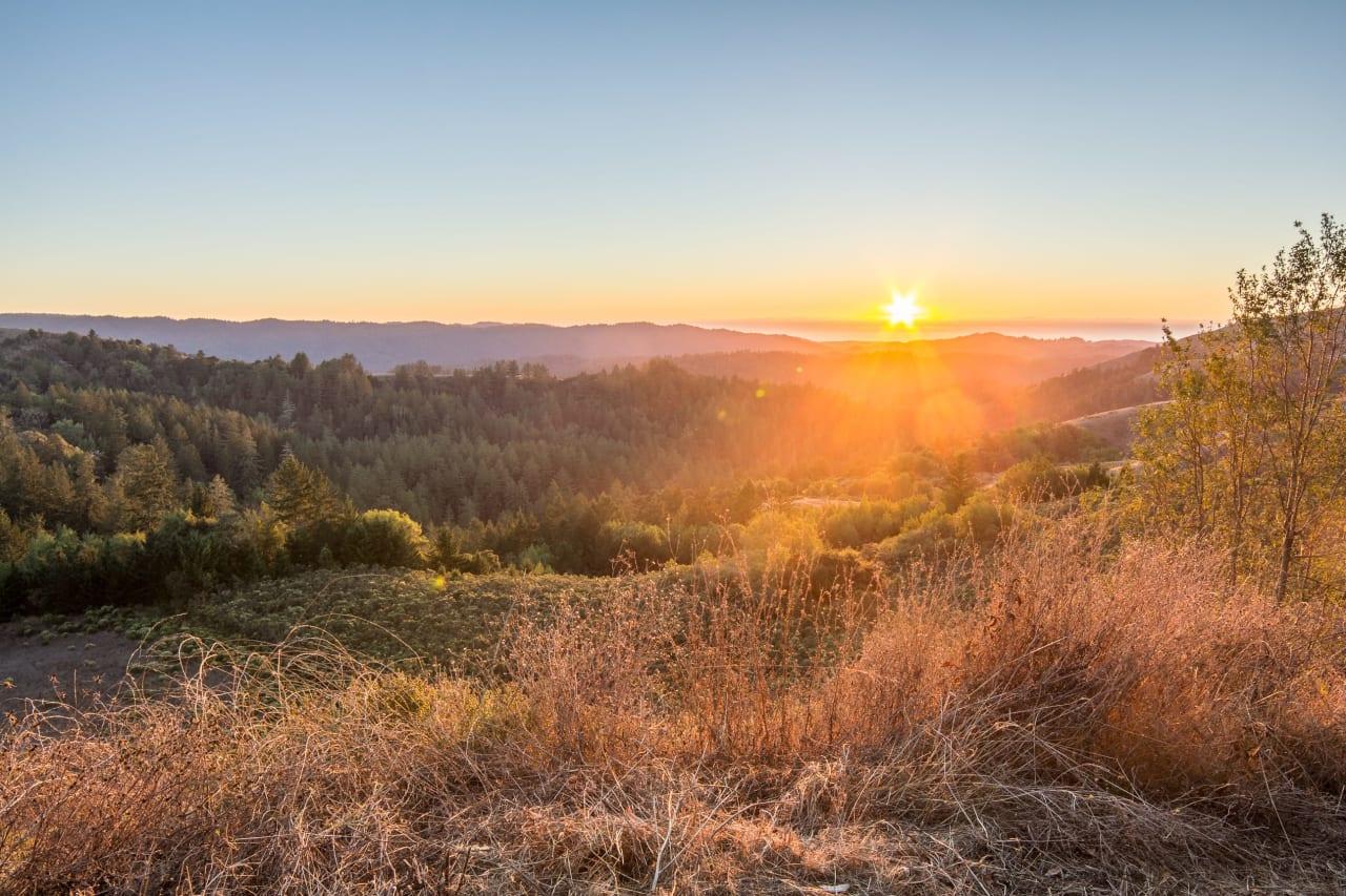 Skyline Woodside photo