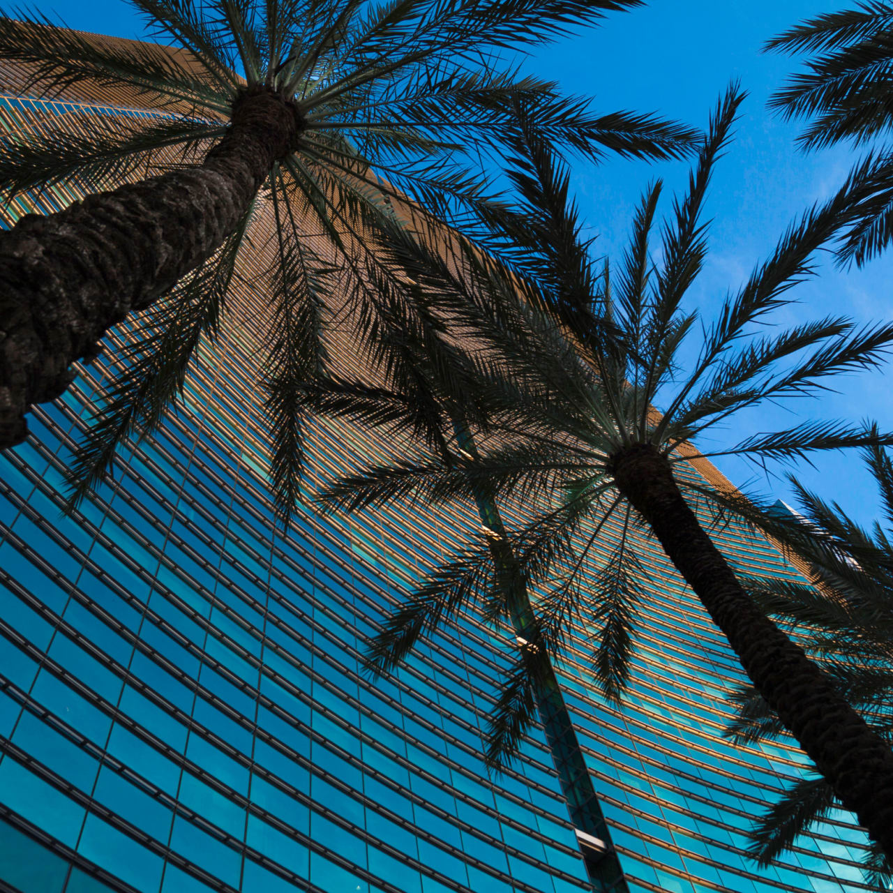 Miami continues to solidify itself as important financial hub