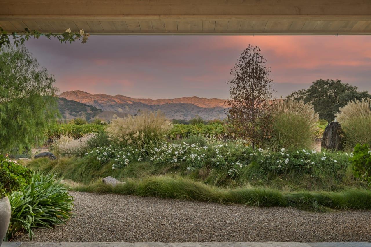 Napa Valley Vineyard Compound