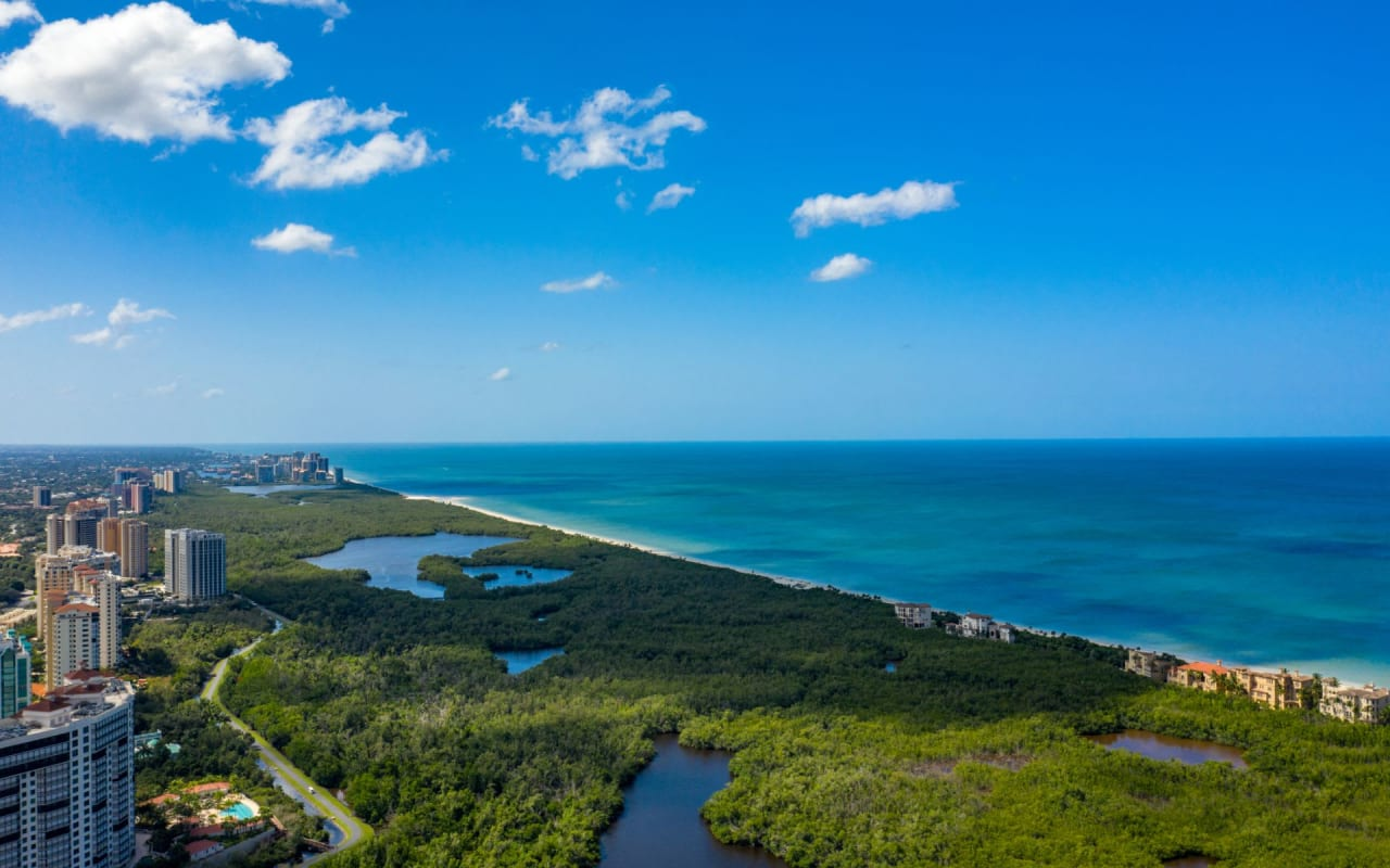 Pelican Bay Real Estate
