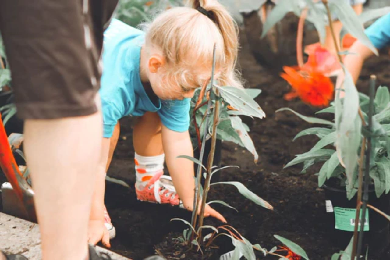 Ways to Give Back or Volunteer in Your Community