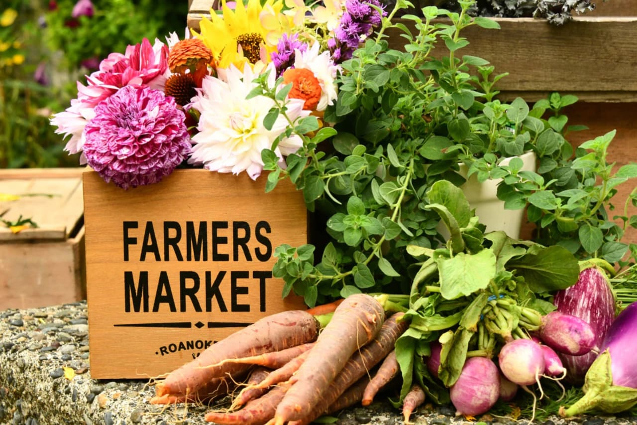 A Complete Guide to North County Farmers' Markets