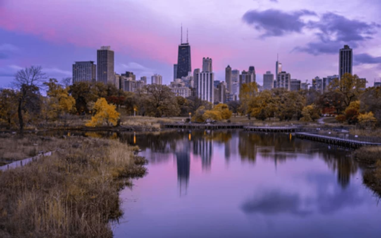 7 Things to Do in Lincoln Park This Spring