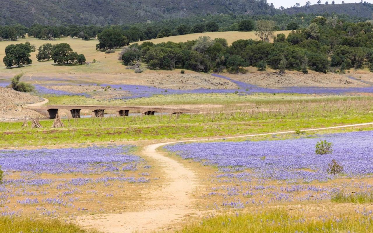 El Dorado Hills / Folsom