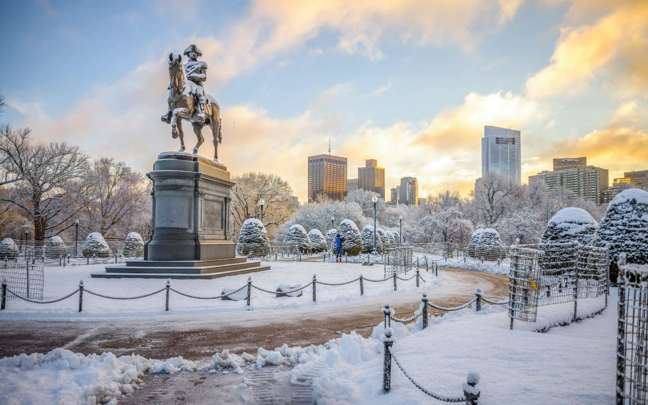 I Live in Boston, It Snowed. Now What?