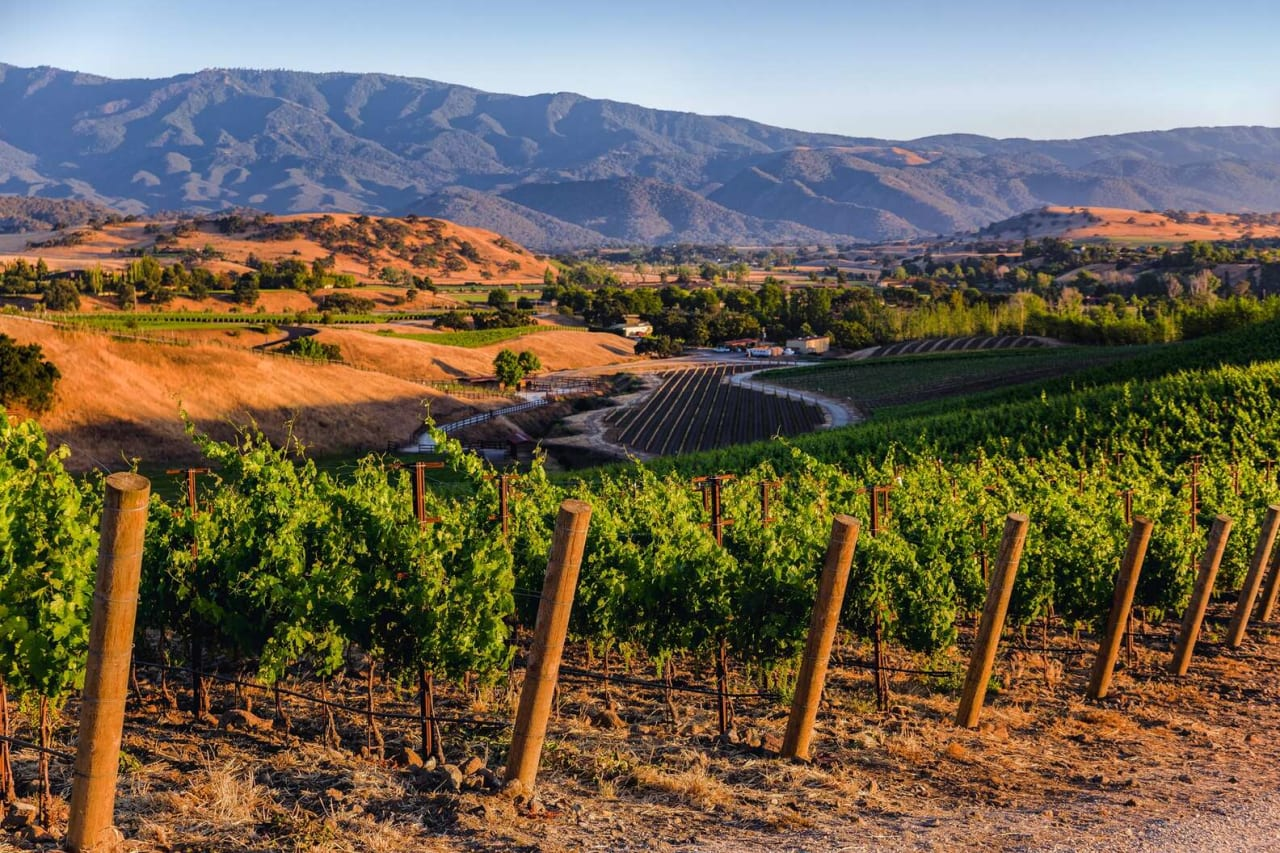 9 Santa Barbara Wineries That Are Worth the Drive From LA