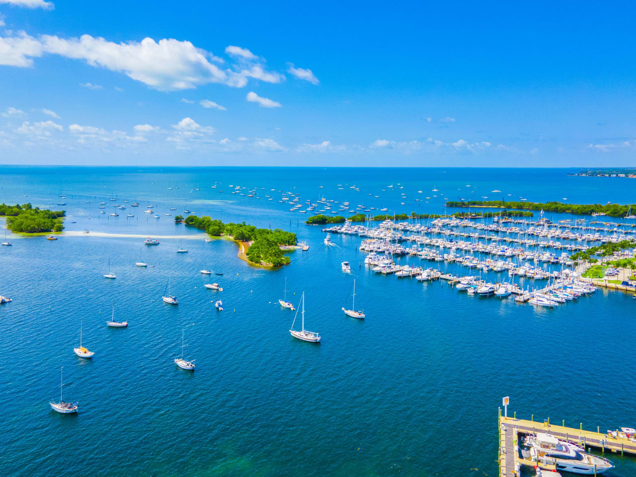 Frenzied Coconut Grove Real Estate market, prices and values