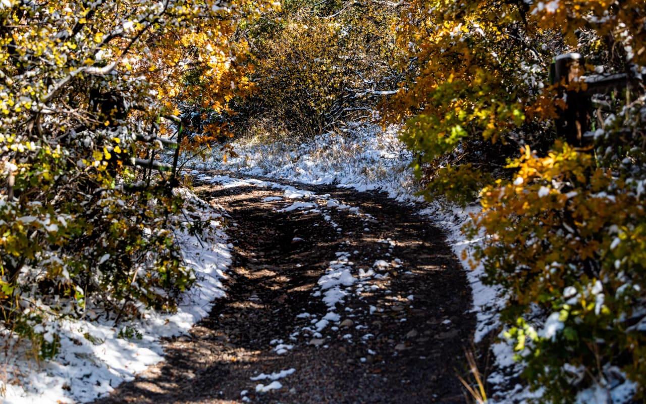 Woody Creek photo