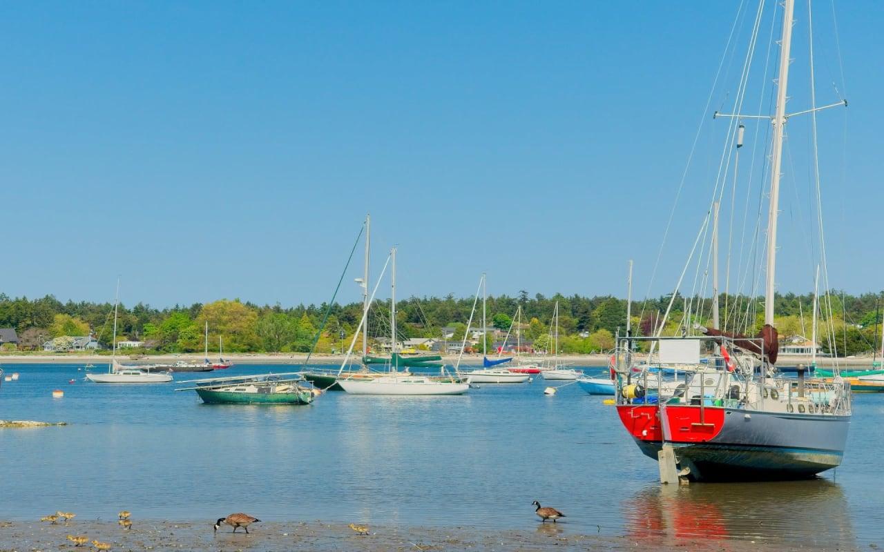 Ten Mile Point   Cadboro Bay