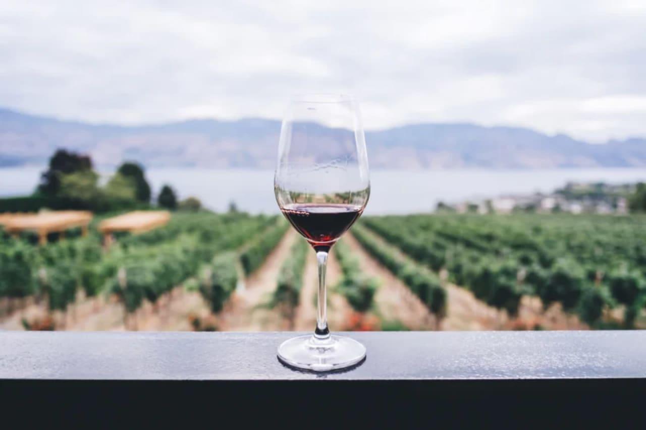 Wine Tasting in Carmel