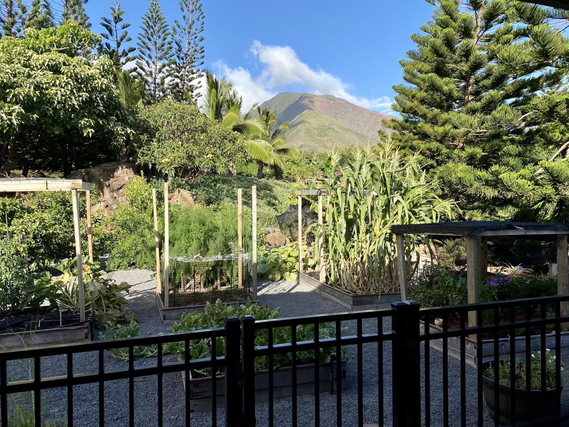 202 Paia Pohaku Place photo