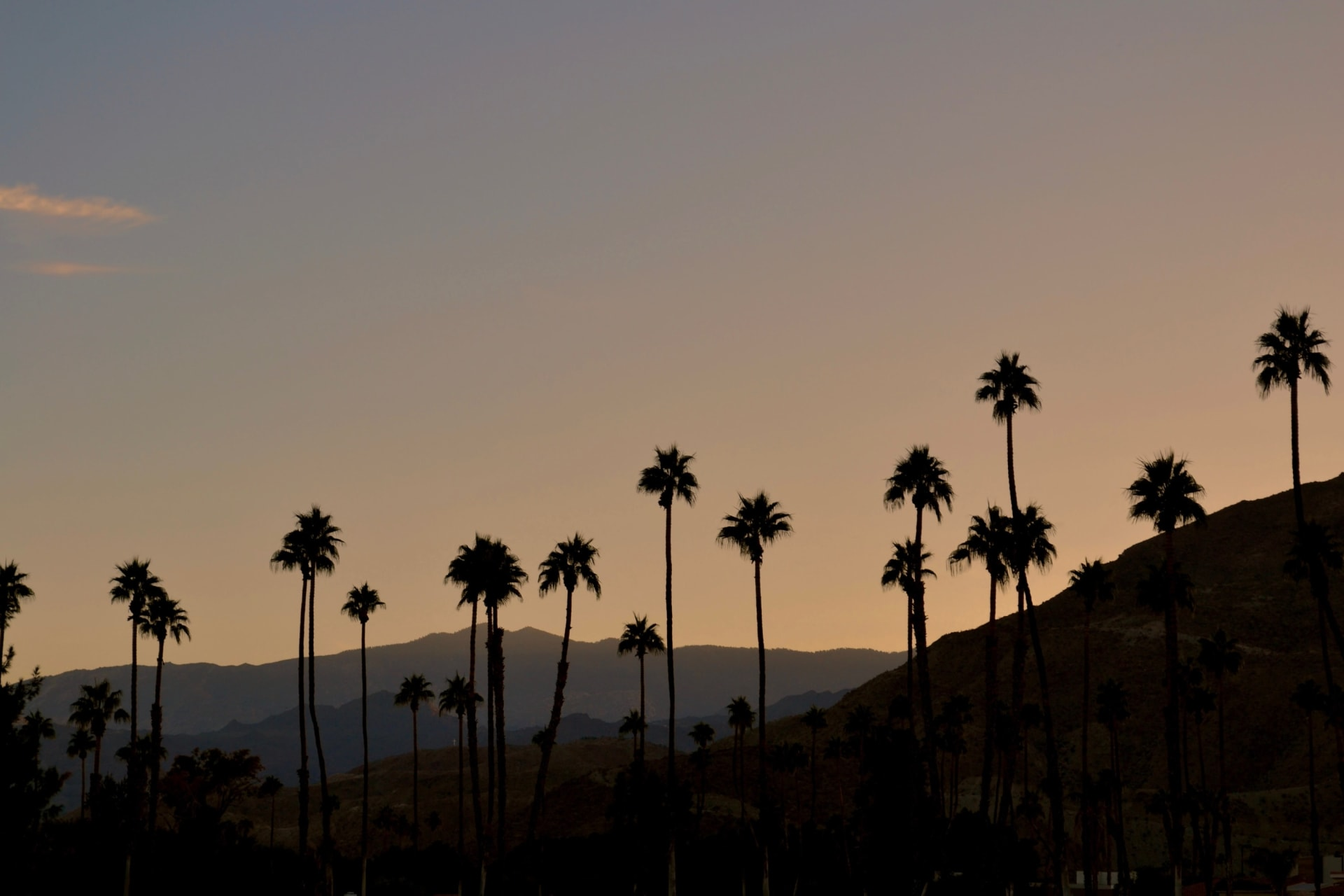 Three Upcoming Events Near Palm Desert