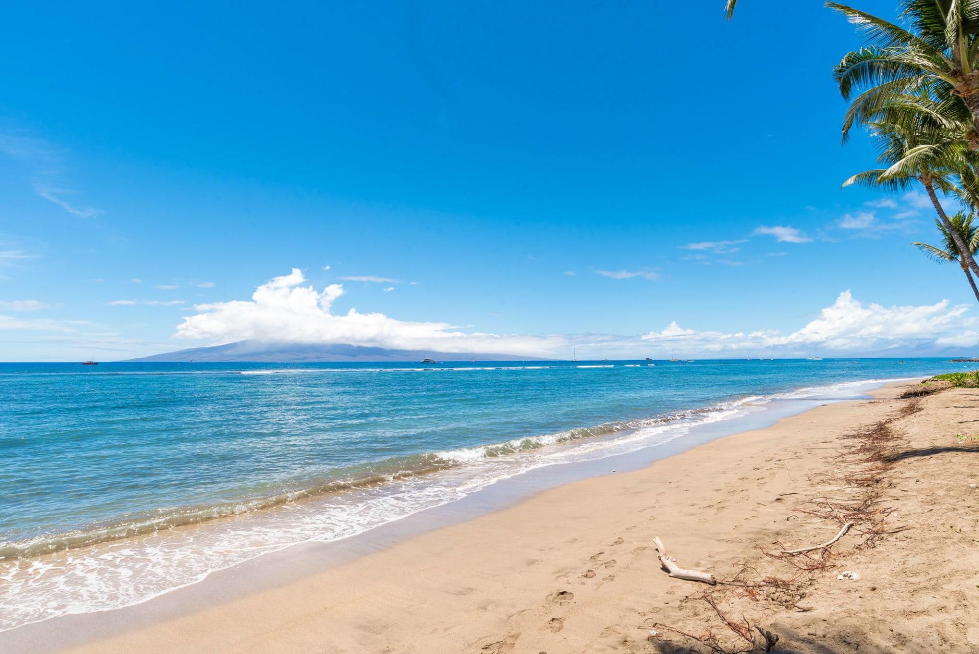 Lahaina Shores 225 photo