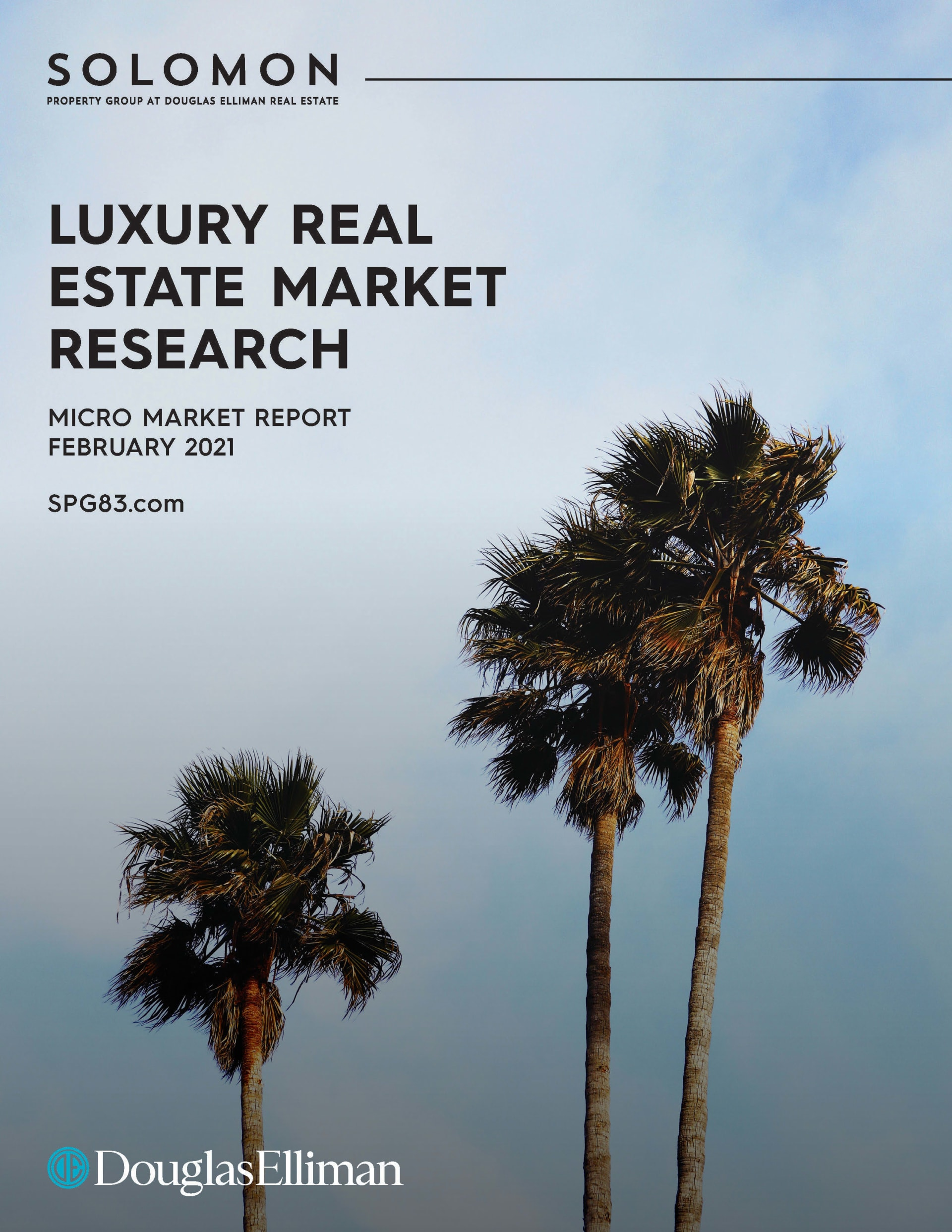 Luxury Real Estate Market Research, Micro Report, February 2021, Solomon Property Group