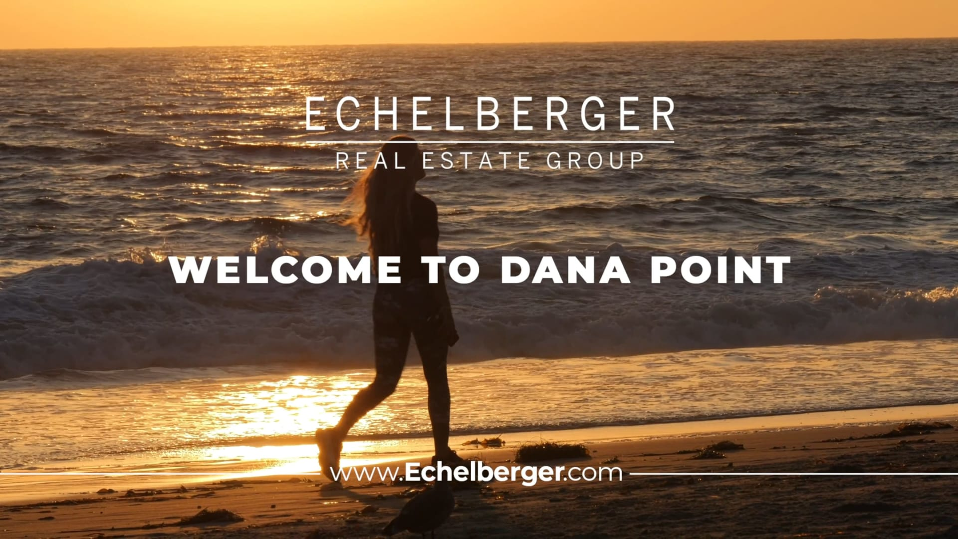 Dana Point video preview