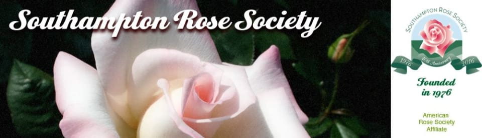 June, Southampton Rose Society Show and Competition