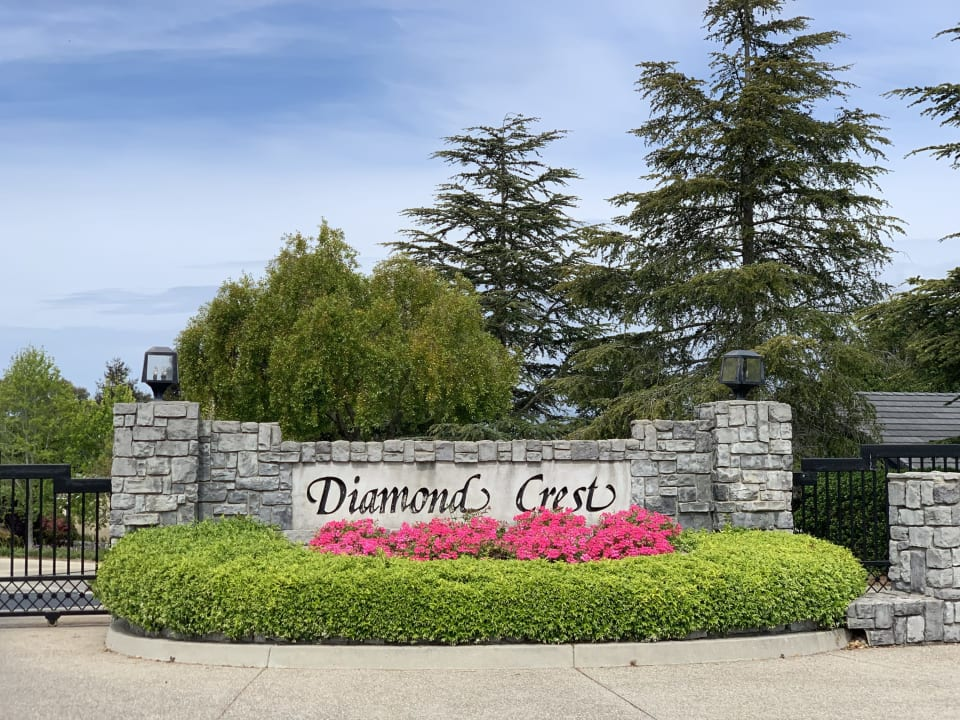 917 Diamond Crest Court