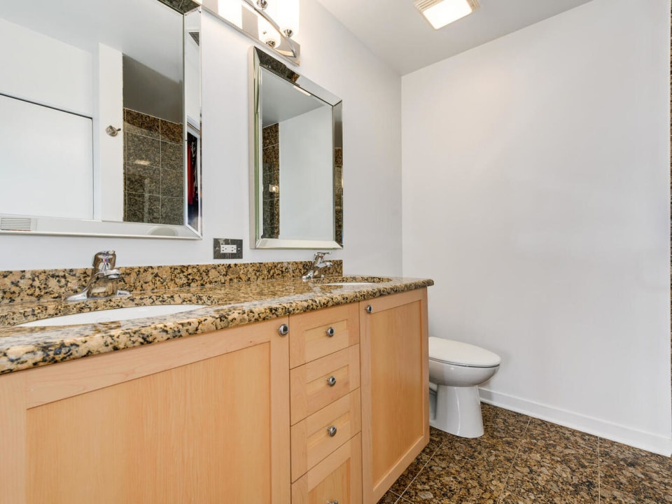 873 N Larrabee  Street, Unit 510 preview