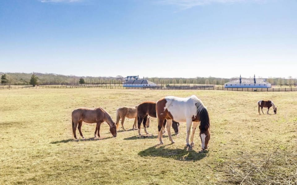 Stable your horses stylishly at these Hamptons properties