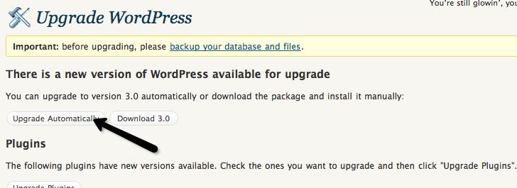 Click the upgrade!