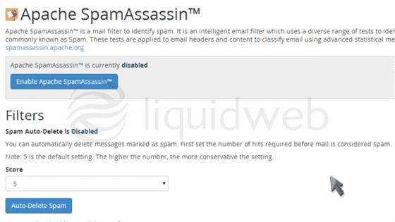 cpanel-paperlantern-7-spam--16