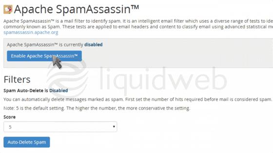 cpanel-paperlantern-7-spam--17