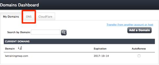 DNS management screen