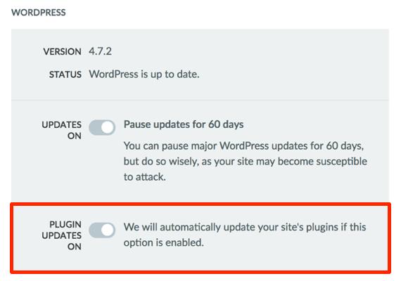 Plugin Updates On option