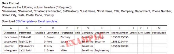 data format example