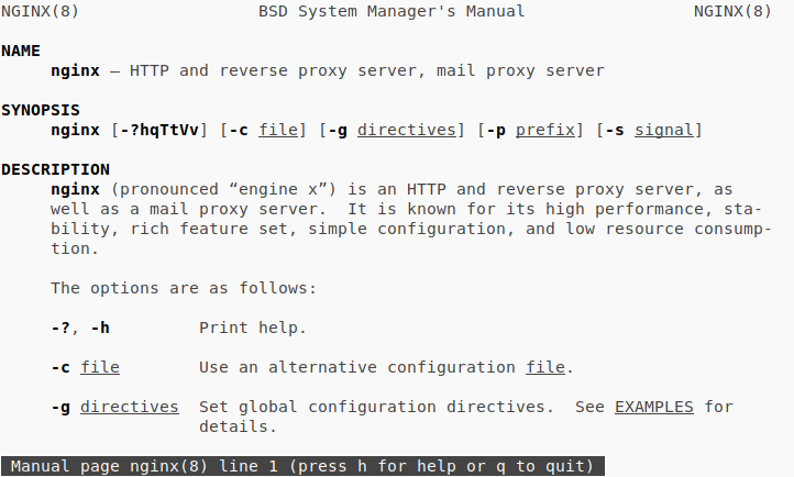 Example of a man page using Nginx