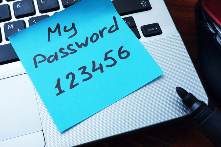 Never use passwords such as 123456. Liquid Web recommends using a password manager to help strengthen password security.