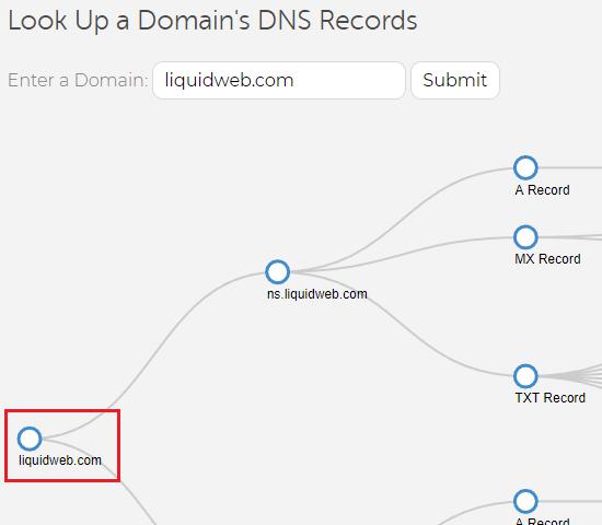 lw dns tree domain