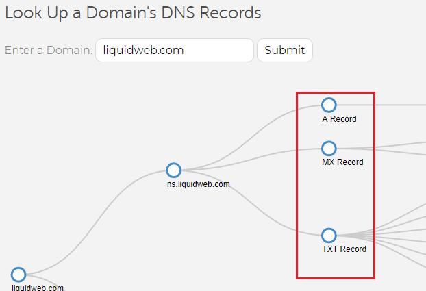 lw dns tree record types