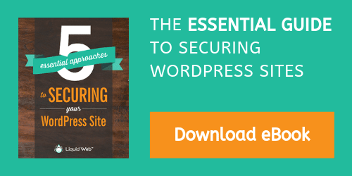 eBook - Essential WordPress Security download