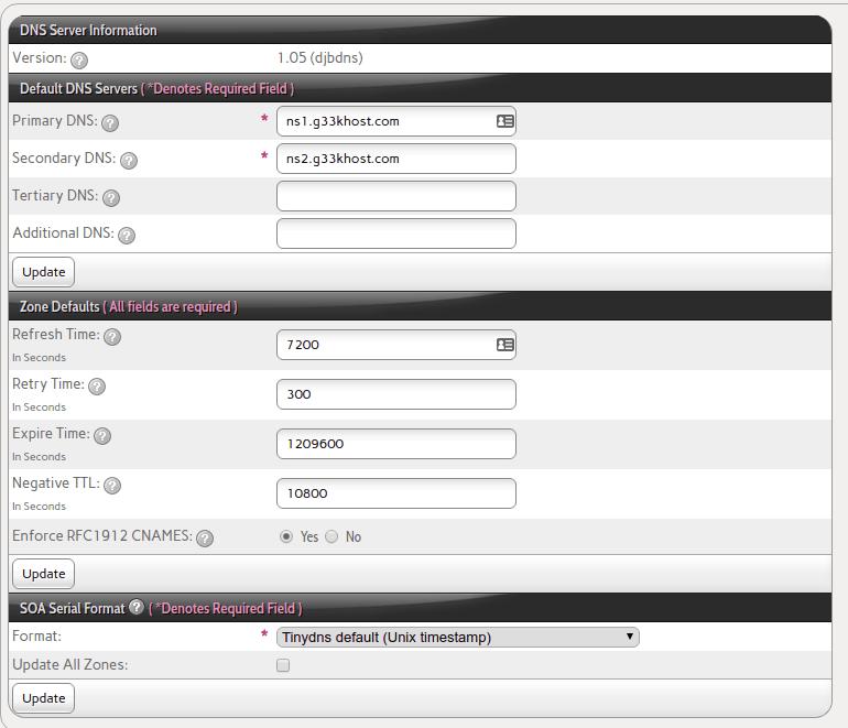 interworx DNS info