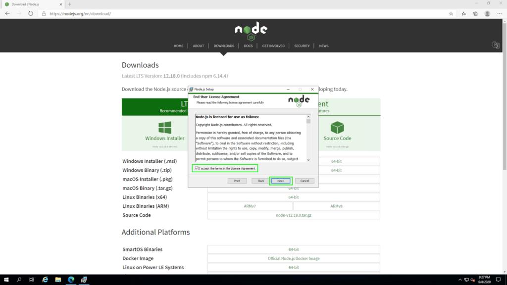 node install04