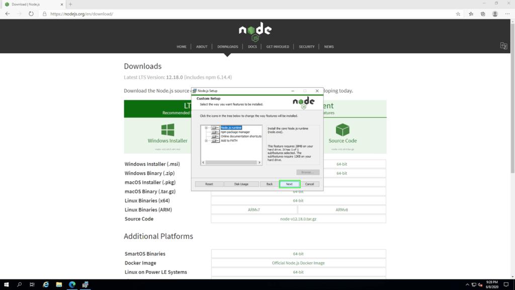 node install06