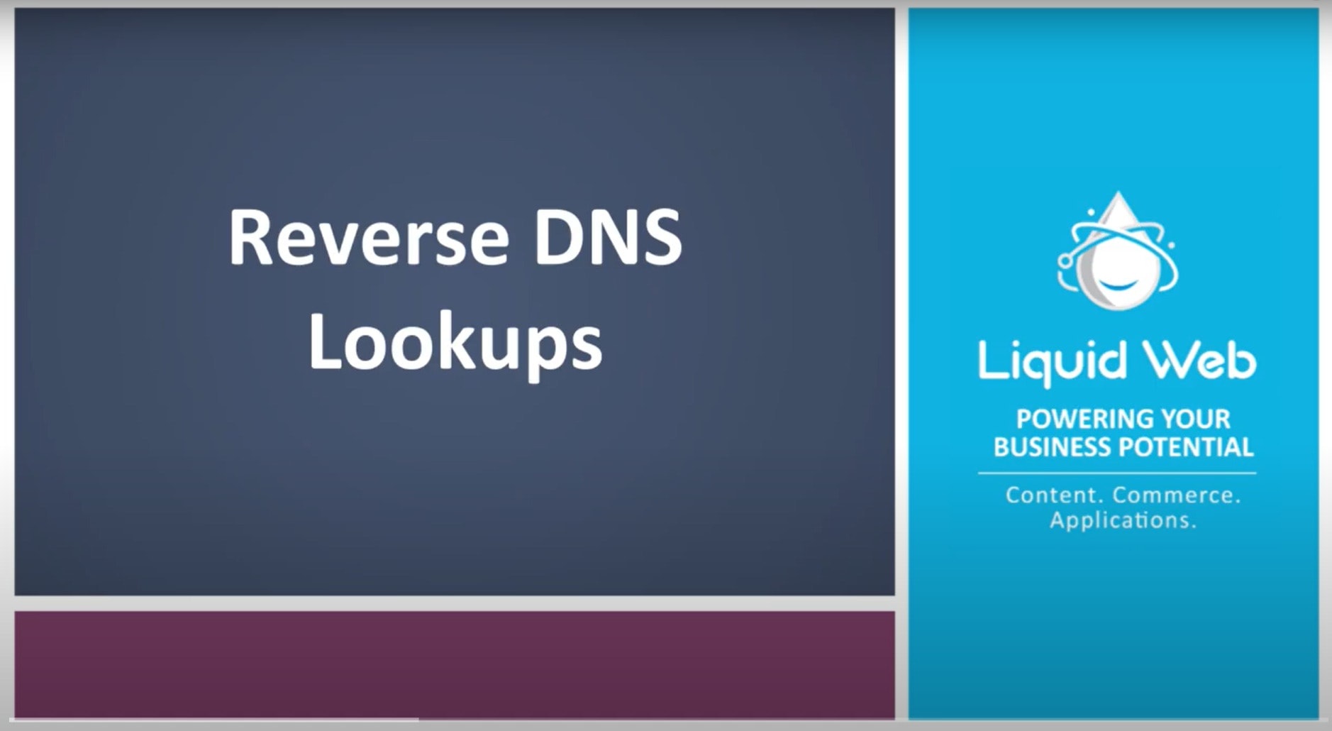How to Perform a Reverse DNS Lookup