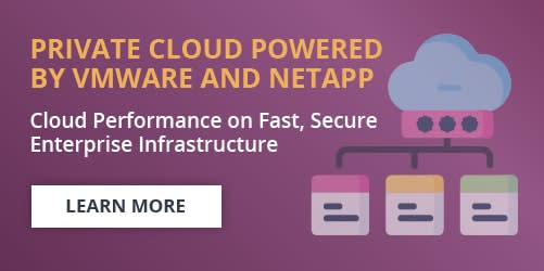 Private Cloud Powered by VMware and NetApp banner