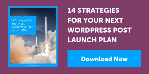 14 Strategies for Your Next WordPress Post Launch Plan - eBook Download