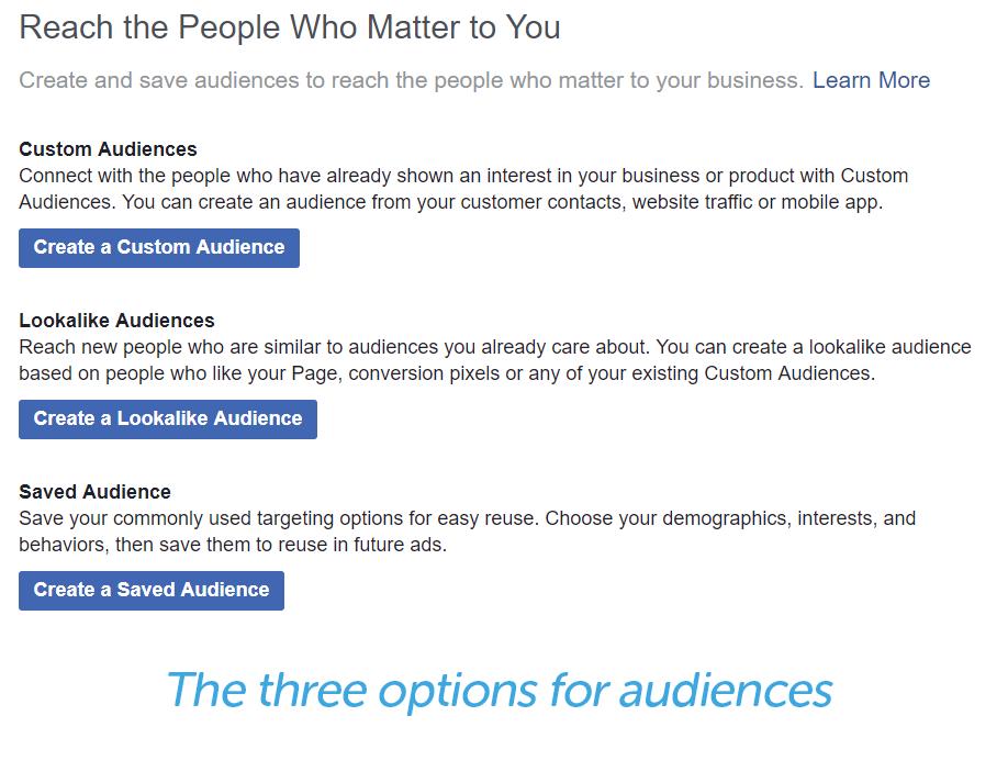 custom, lookalike, and saved audience options