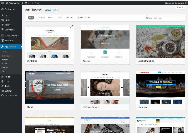 Browse free and paid themes for your new WordPress site
