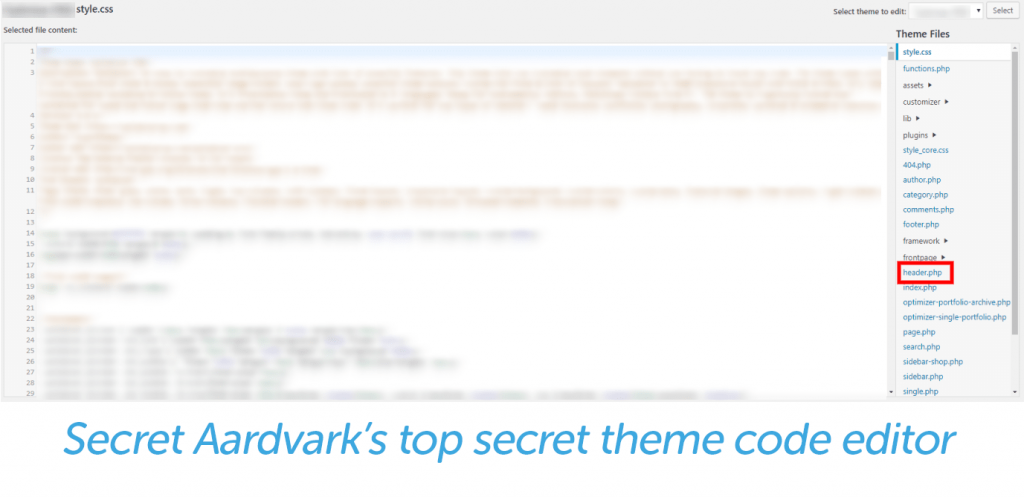 secret aardvark theme code editor