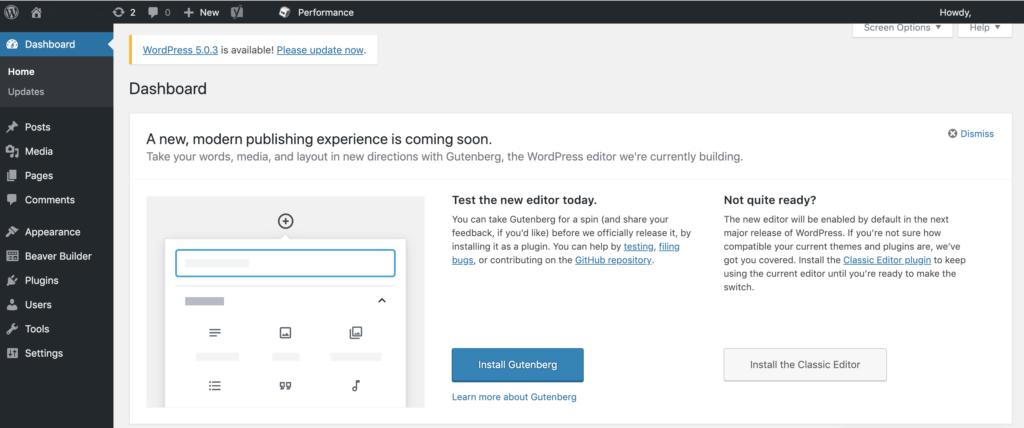 Update to WordPress 5 through the admin panel example