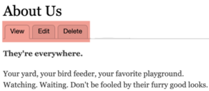 Drupal 8 View Edit Delete tabs
